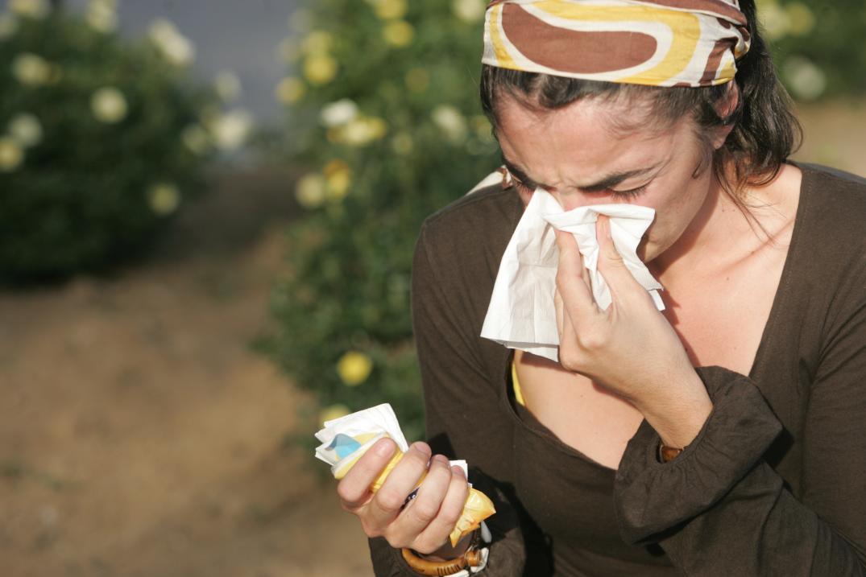 analisis de sangre para alergias respiratorias