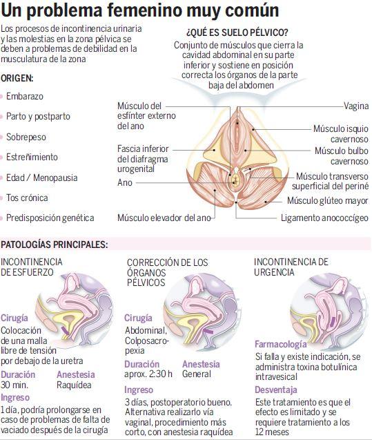 Incontinencia urinaria causas emocionales