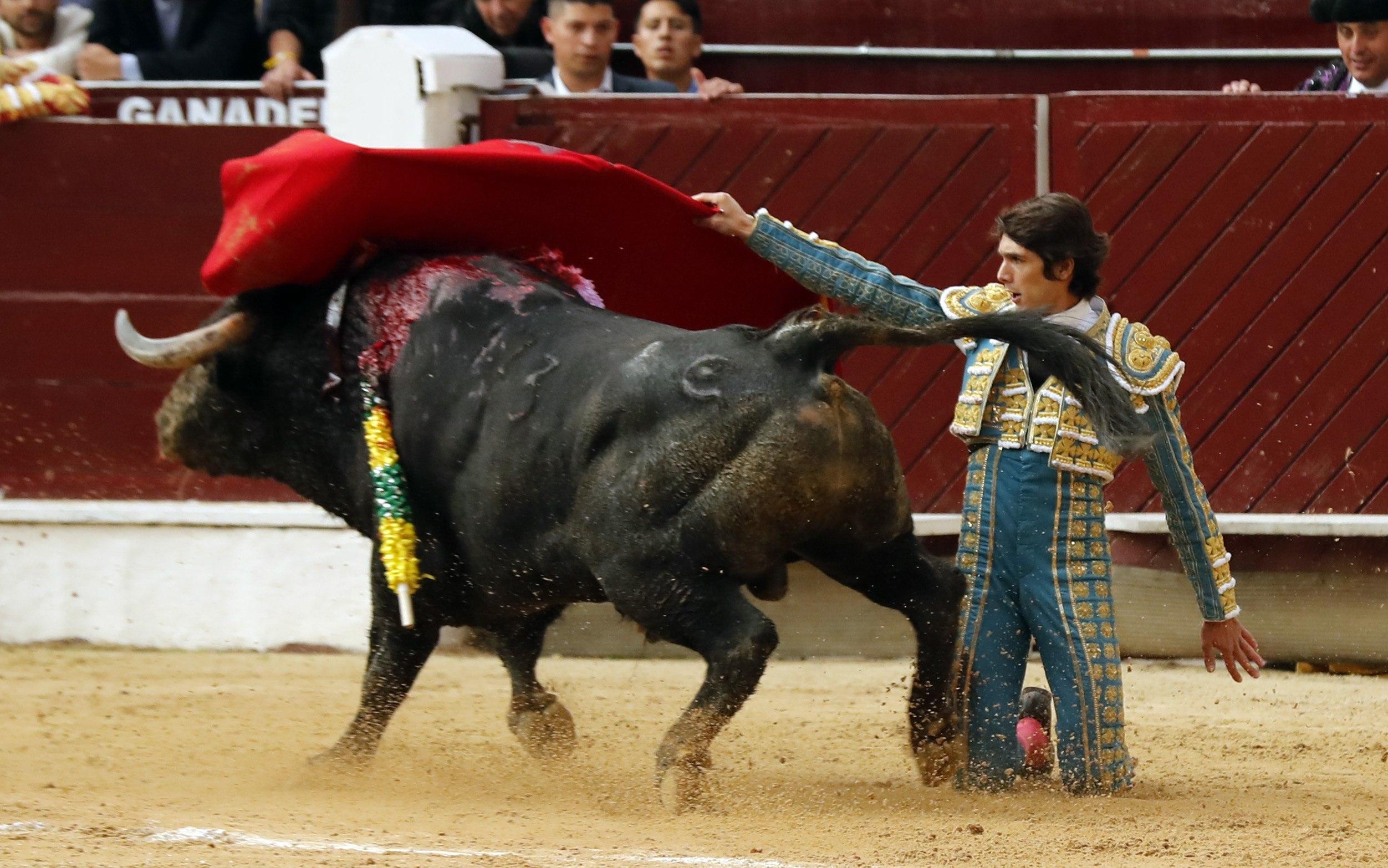 Castella conquista Bogotá, a pesar de perder la Puerta Grande