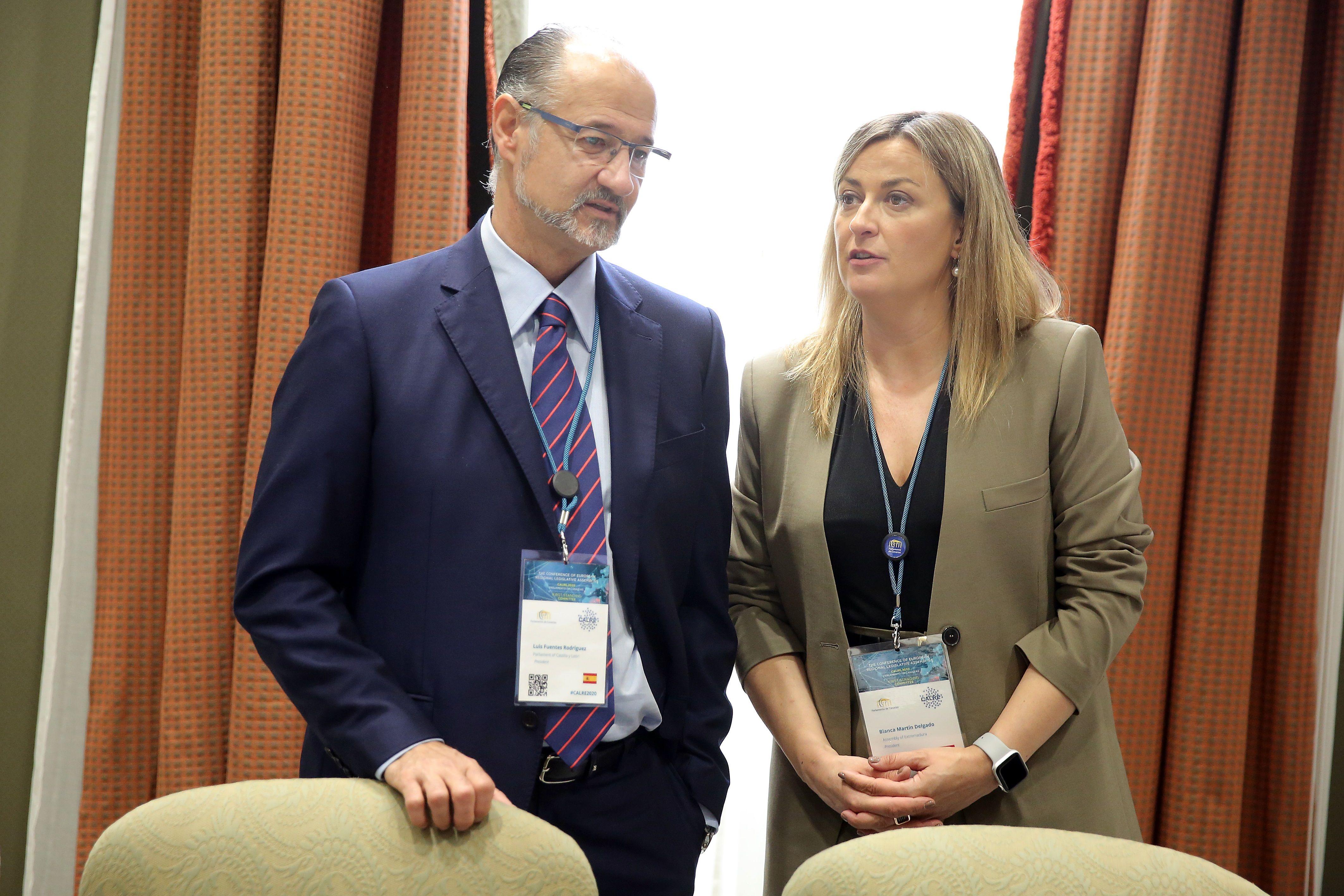 Las Cortes de Castilla y León seguirán liderando el Grupo sobre Despoblación de las Asambleas Europeas